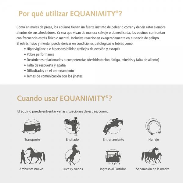 Equanimity® · Da confianza a su equino