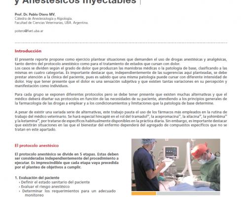 Protocolos Analgésicos y Anestésicos Inyectables