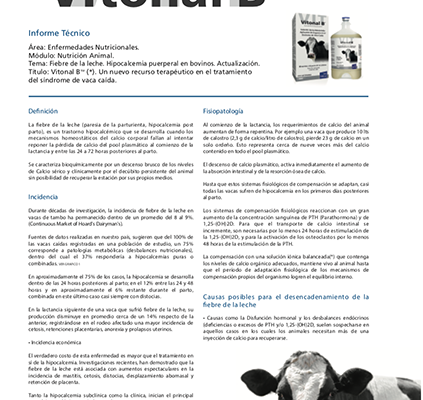 Vitonal B Informe Técnico
