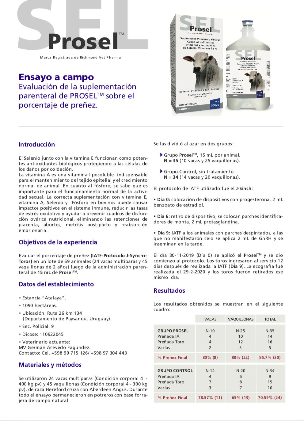 Informe Técnico Prosel